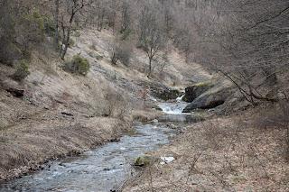 reka Sushica