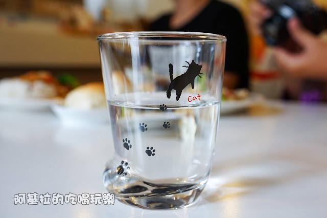 14590093 1099289236790987 1561890100960781859 o - 熱血採訪 朵貓貓咖啡館 - 貓咪餐廳