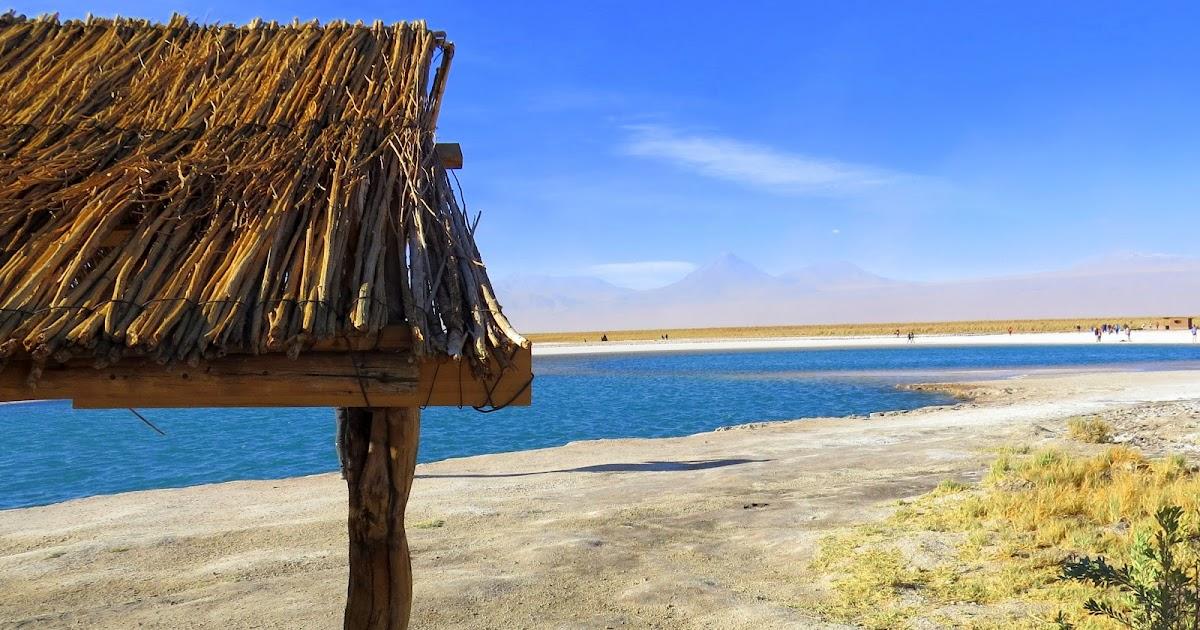 Laguna Cejar, Ojos del Salar e por do sol na Laguna Tebinquiche (Atacama) em uma tarde - Não Pira, Desopila