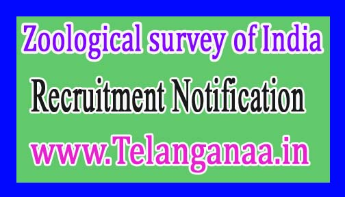 Zoological survey of India- Jr. Project Fellow