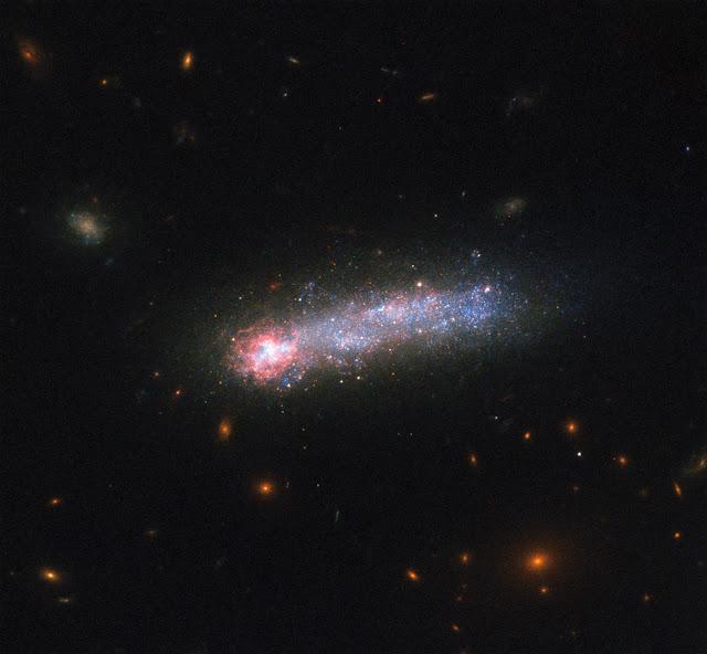 LEDA 36252 Galaxy