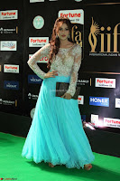 Angela Krislinzki in a lovely Neon Blue Skirt at IIFA Utsavam Awards 2017  Day 2  Exclusive 01.JPG