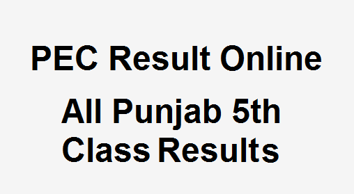 5th Class Result 2018 Check Online - All Punjab PEC 5th Class Results