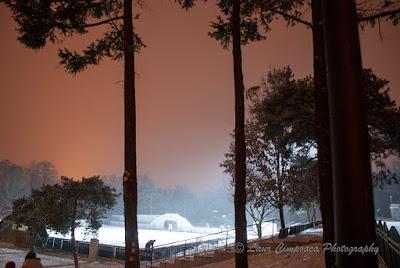 Iarna Winter Inverno Invierno
