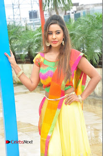 Actress Sri Reddy Pictures at Dandiya Navrang Utsav 2016 Curtain Raiser Event  0053.JPG
