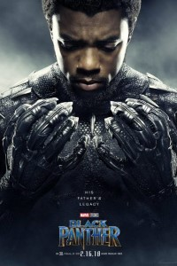 Download Black Panther (2018) {Hindi-English} 480p 720p 1080p