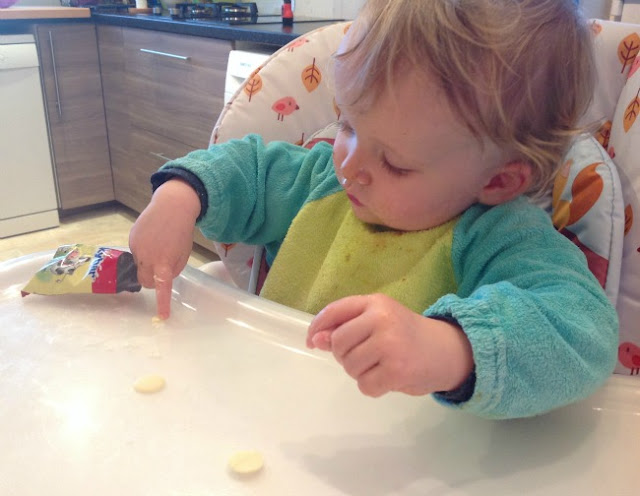 picture of a toddler poking a white chocolate button