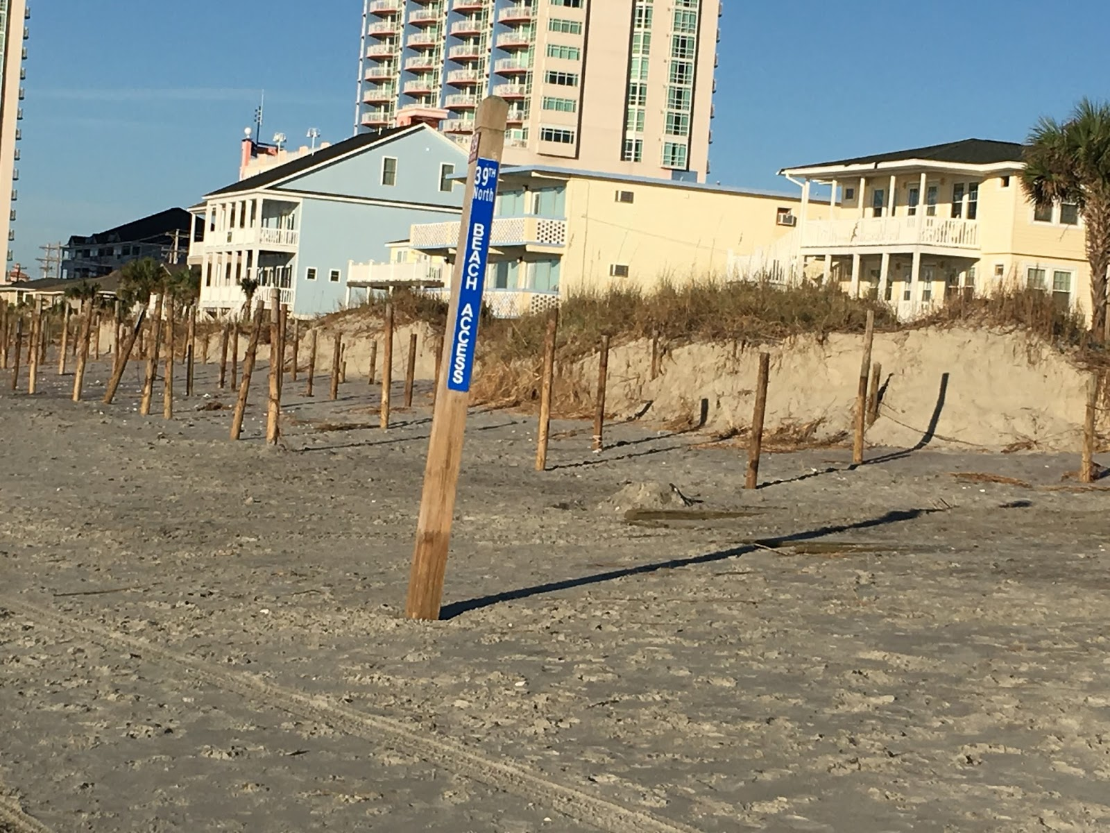 Knitting Up A Storm North Myrtle Beach : North myrtle beach sea turtle patrol