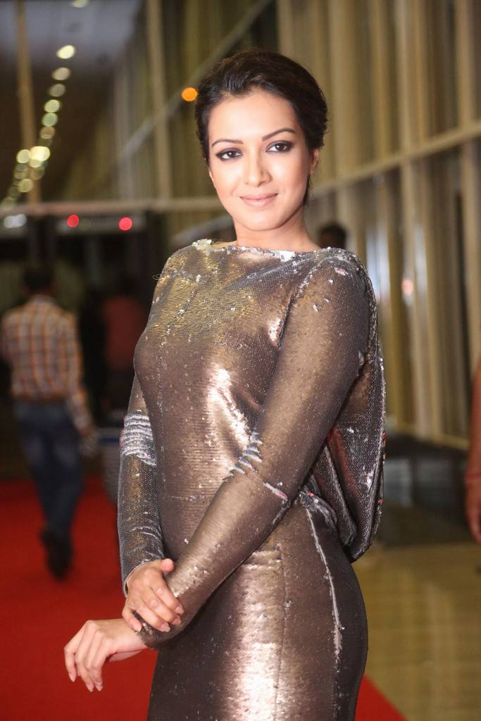 Catherine Tresa Photos At Gautham Nanda Movie Audio Launch