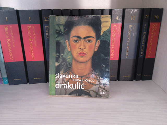 Frida ili o boli, roman Slavenke Drakulić (ogled knjige i preporuka / book review and recommendation)