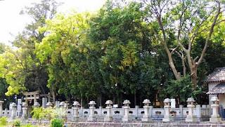 人文研究見聞録:木熊野神社(中村町) [香川県]