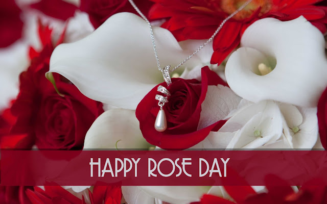 HD Wallpapers Of Rose Day 2018