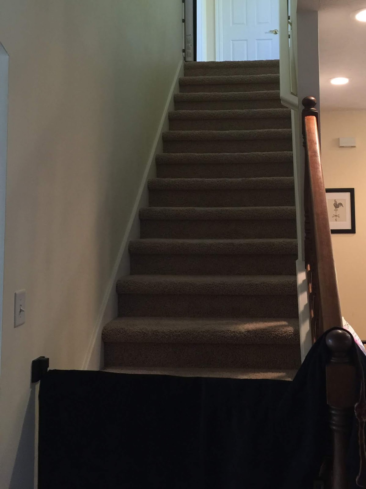 We Started By Removing The Carpet And Pad From The Stairway. Yuck. Ed  Pulled The Carpet/pad And About A Million Staples. Seriously, Every Time He  Thought He ...