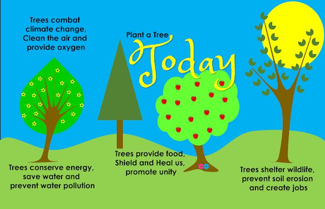 Save Trees Slogan Poster 3
