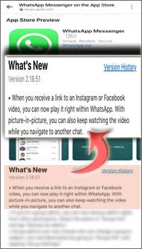 Pembaruan WhatsApp Memutar Video Dari Instagram dan Facebook Langsung Di Layar Obrolan