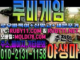 #루비게임 #야생마 #츄쳔 #루비바둑이 #루비맞고 #바둑이 #포커 #맞고 #현금게임 010-2I3I-II58 문의 환영 #구글 #RUBY11.COM #RUBY11.NET #모바일게임