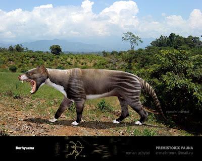 marsupiales de la argentina extinta Borhyaena