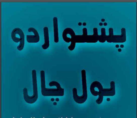 Pashto Dictionary Online / Offline pdf apk - Pashtoon