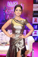 Shreya Saran in Skin Tight Golden Gown ~  Exclusive 011.JPG