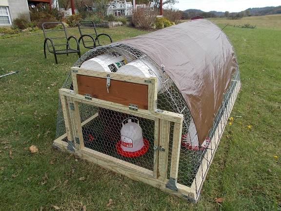 Chick-a-Doodles: Chicken Tractors