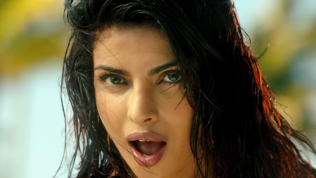 Priyanka Chopra Exotic Video Song Download Hd 1080p Vinnyoleo