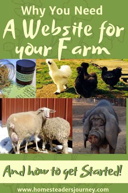 If you would like to sell livestock or products from your farm you will need a website! A good website has been key in getting our own homestead business going and profitable! #homesteadbusiness #homesteader