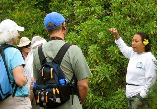 Tinuku Tripal serve authentic locals guide-hailing platform to explore Indonesia