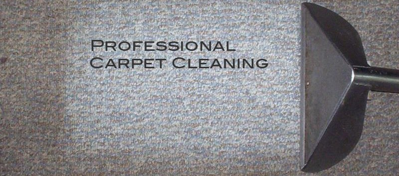 Benefits of a carpet cleaning service for carpets and ...