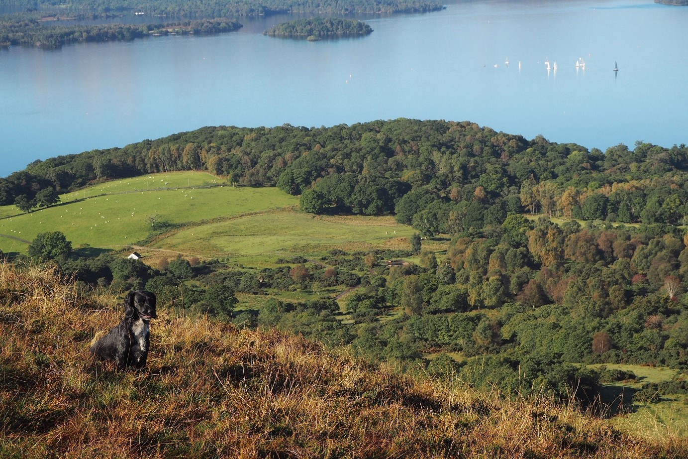 Loch Lomond Scotland travel guide