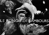 Couverture de l'ouvrage Le Rungis de Lambours de Xavier Lambours