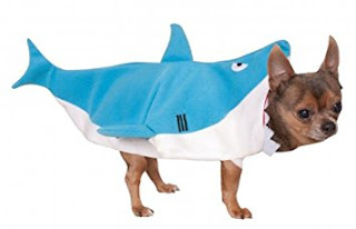 9 Adorable Costumes for Your Pets
