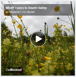 https://www.mixcloud.com/straatsalaat/wildflwers-in-death-valley/