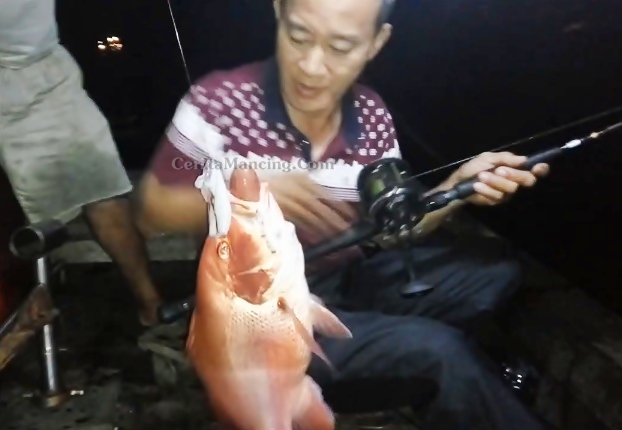 Pak Tua Mancing Dapat Ikan Kakap Merah Besar