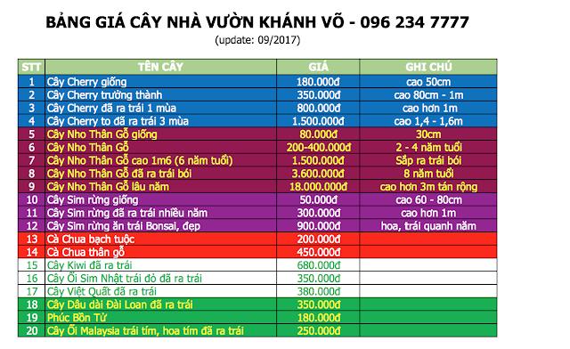 Đăng tin rao vặt: Giá trị phong thủy của cây nho thân gỗ Bang-gia-nha-vuon-khanh-vo-0917%2B-%2BCopy