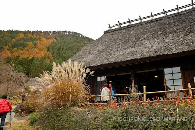 fuji museum