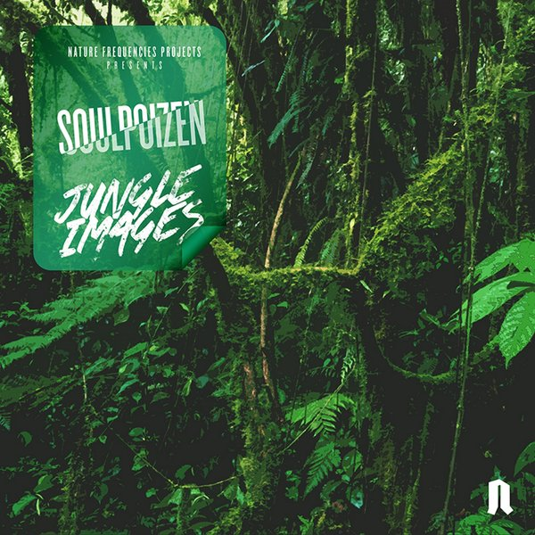 house music forever soulpoizen jungle visions original