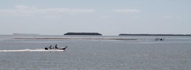 Islas, cayos e islotes en la Florida Bay desde Flamingo