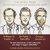 Physiology or Medicine Nobel Prize 2019 For Their Discovery at how cells Sense and adopt to Oxygen Availability