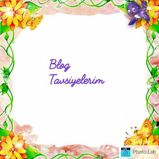 https://delikizinbohcs.blogspot.co.at/p/blog-tavsiyelerim.html