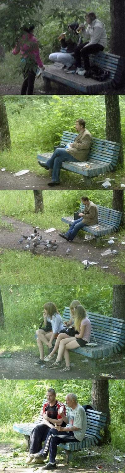 Lustige Bilder Collage Tauben füttern Parkbank
