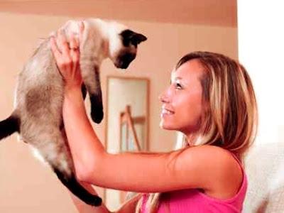 niña jugando con gato siames