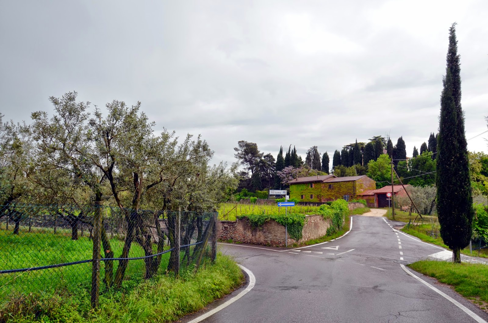 lake garda wine roads