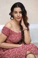 Diksha Panth in a Deep neck Short dress at Maya Mall pre release function ~ Celebrities Exclusive Galleries 038.JPG