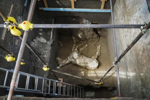 Εντυπωσιακό εύρημα στην Πομπηία - Βρέθηκε άλογο που είχε θαφτεί στη λάβα μετά την έκρηξη του Βεζούβιου