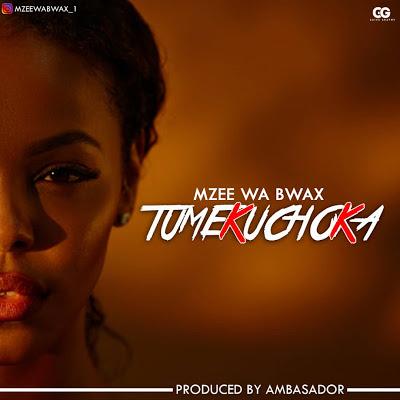 Download Audio | Mzee wa Bwax - Tumekuchoka (Singeli)