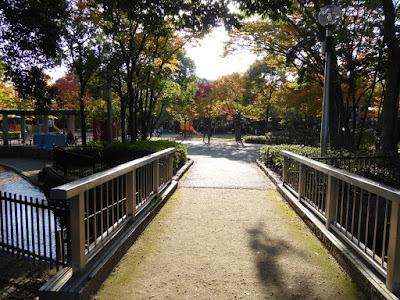 秋の市民の森(鏡伝池緑地) トリムの森