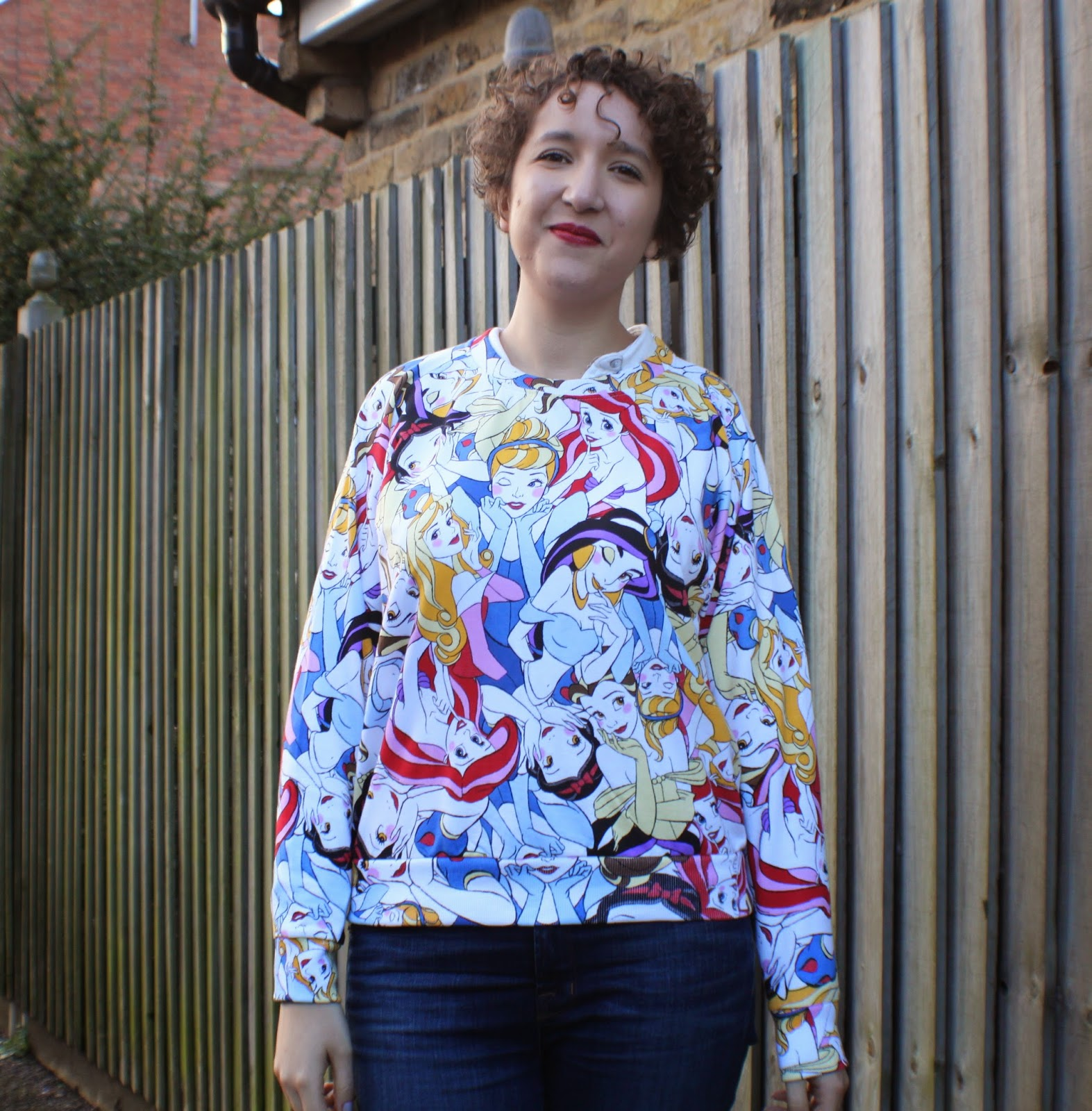 disney princess jumper for adults