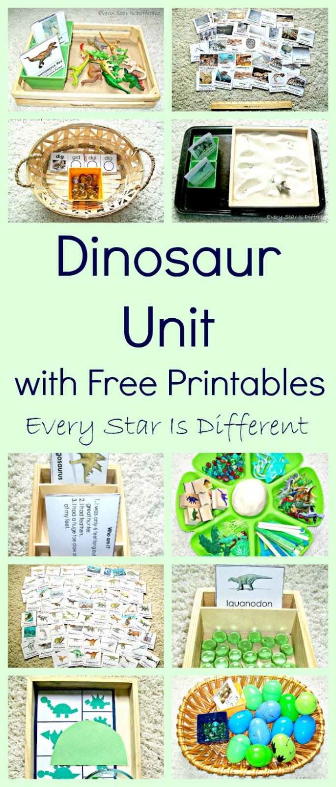 Dinosaur Unit w/ Free Printables - Every Star Is Different