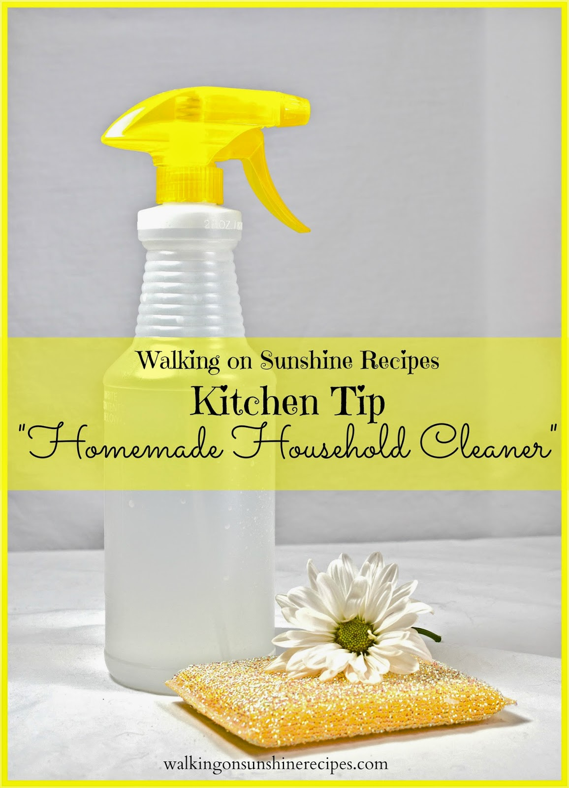 Homemade Household Cleaner from Walking on Sunshine Recipes