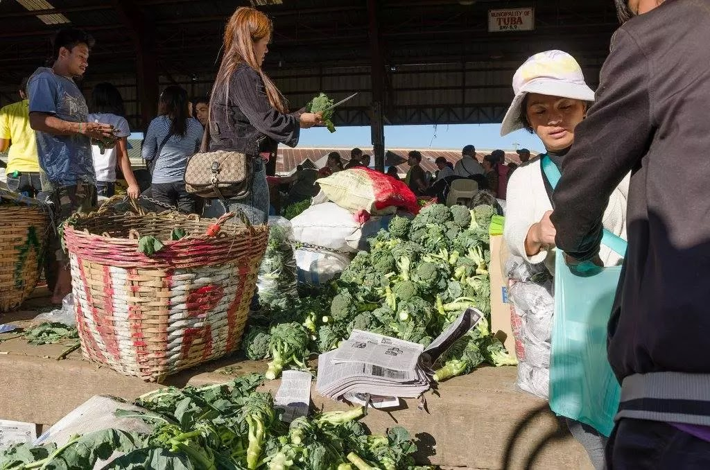 Vegetable Cleaners Trading Post La Trinidad Benguet Cordillera Administrative Region Philippines